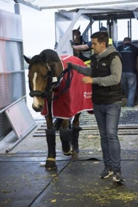 Horse inn Biersét
