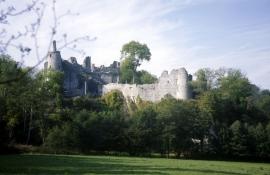 Ruine du château de Montaigle.