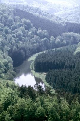 botassart vallée de la Semois.