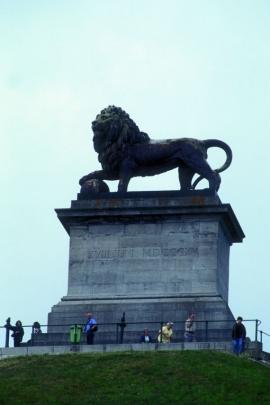 But du lion.
