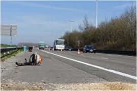 Défrichement auxabords de l'autoroute E411, sécurité des usagés.