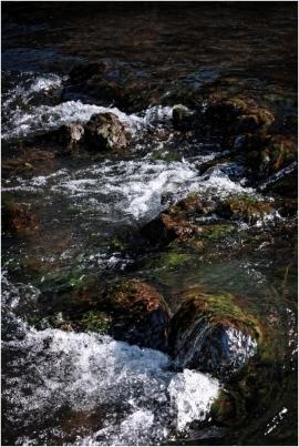 Vallée de la Molignée.La Molignée a donné son nom à une charmante vallée boisée qui compte de nombreuses curiosités liées au riche patrimoine de la région et autres attractions touristiques comme le château de Montaigle, le château-ferme de Falaën, les abbayes de Maredsous et de Maredret, l'ancien château d'Ermeton-sur-Biert reconverti en couvent, la villa des Lapins, les draisines de la Molignée