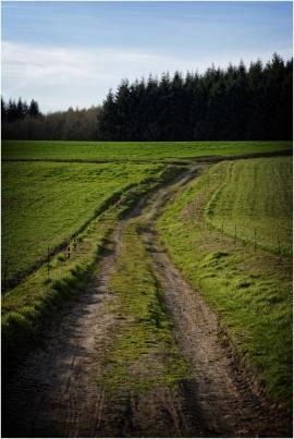 paysage - Nature