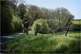 Paysage rural Thon-Samson.