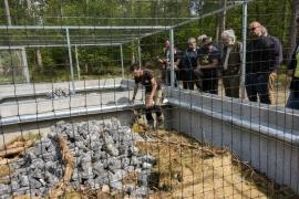 En partenariat avec Infrabel etle Service public de Wallonie, le Domaine des grottes de Han (Rochefort) a inauguré22 mai 2017un centre de sauvegarde de couleuvres coronelles, l?une des trois espèces de serpent recensées en Belgique.