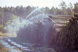Le Département de la Nature et des Forêts met en oeuvre le code forestier, les lois sur la conservation de la nature, sur les parcs naturels, sur la chasse et sur la pêche en concertation avec les milieux concernés. Entretien des forêts, coupe de bois.