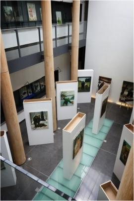 Exposition. Milo Dardenne, le peintre du silence, Espace Wallonie Bruxelles. (2017)
