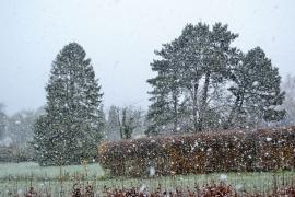 Première neige en Wallonie (Andenne) le 30 novembre 2017.