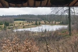 Site et alentours de la Maison forestière gérée par le Département Nature et Forêts (DNF) du Service public de Wallonie à Tenneville.