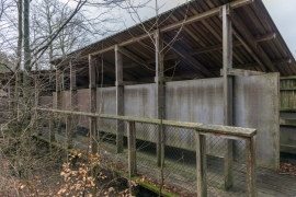 Site et alentours de la Maison forestière gérée par le Département Nature et Forêts (DNF) du Service public de Wallonie (SPW/DGO3) à Tenneville.