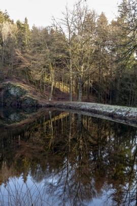 Paysage et nature
