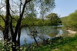 Canal de l'Ourthe